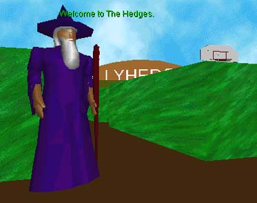 Enter The Hedges